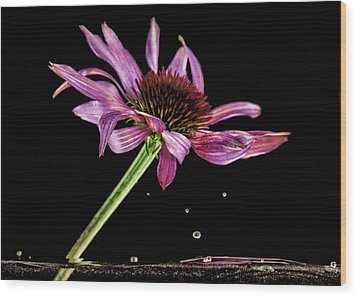 Flowing Flower 6 Wood Print