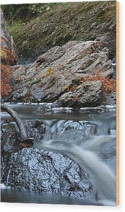 Flowing Water Wood Print by Paula Brown