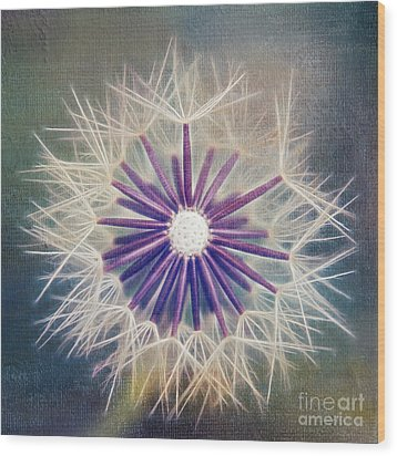Fluffy Sun - 9bt2a Wood Print by Variance Collections