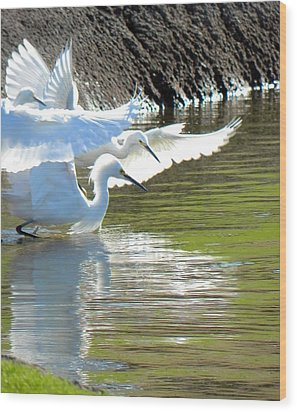 Wood Print featuring the photograph Flurry by Deb Halloran