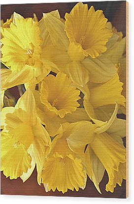 Wood Print featuring the photograph Flurry Of Daffodils by Diane Alexander