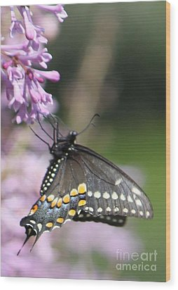Flutter Bye Wood Print by French Toast