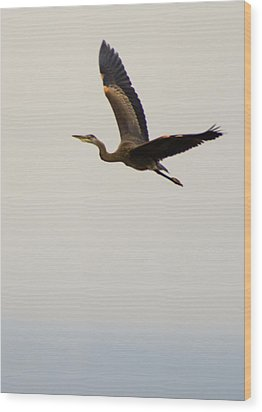 Wood Print featuring the photograph Fly Away by Erin Kohlenberg