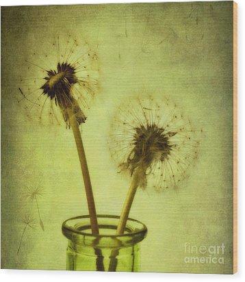 Fly Away Wood Print by Priska Wettstein