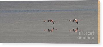 Fly Fly Away My Pretty Flamingo Wood Print by Heiko Koehrer-Wagner