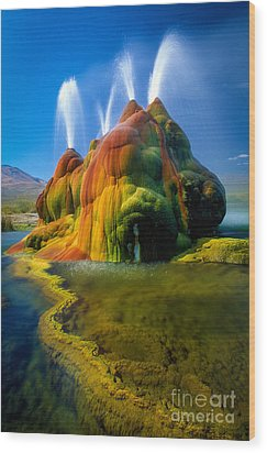 Fly Geyser Travertine Wood Print by Inge Johnsson