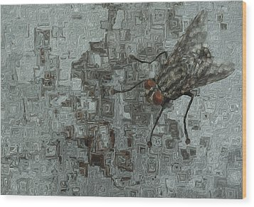 Fly On The Wall Wood Print by Jack Zulli