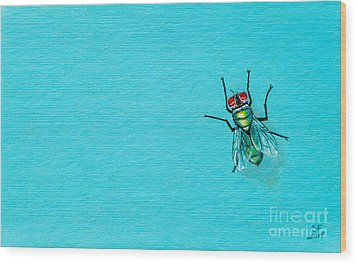 Fly On The Wall Wood Print by Stefanie Forck