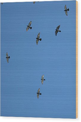 Fly Through The Sky's Ceiling Wood Print