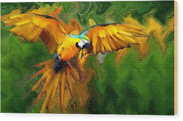 Flying 2 Wood Print by Bruce Iorio