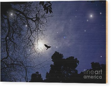 Flying By The Moon Wood Print
