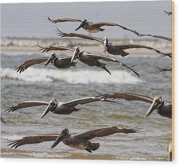 Flying In Wood Print
