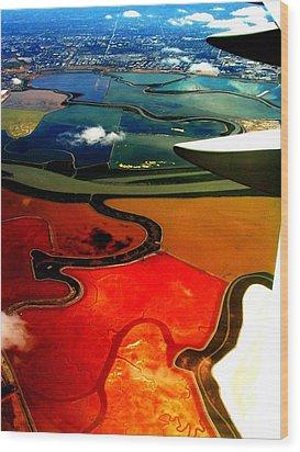 Flying Into Sfo Wood Print