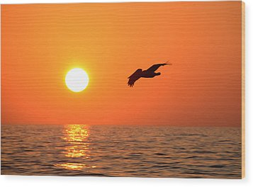 Flying Into The Sun Wood Print by David Lee Thompson