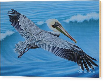 Flying Pelican Wood Print by Tish Wynne