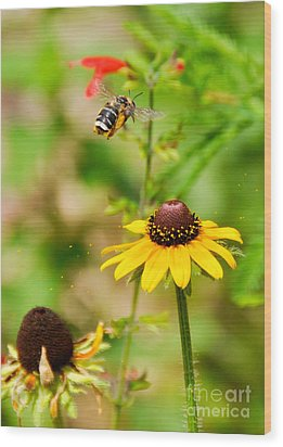 Flying Pollen Wood Print