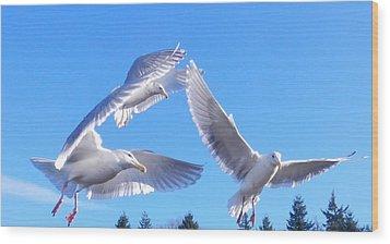 Wood Print featuring the photograph Flying Seagulls by Karen Molenaar Terrell