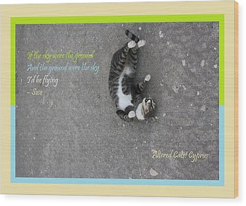 Flying With Sose From The Park Altered Cats Cyprus Wood Print