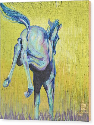 Foal At Play Wood Print by Sally Buffington