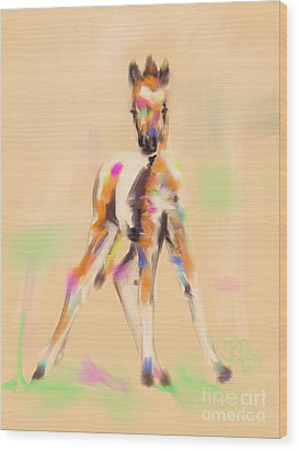 Foal Cute Fellow Wood Print by Go Van Kampen