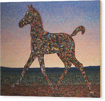Foal Spirit Wood Print by James W Johnson