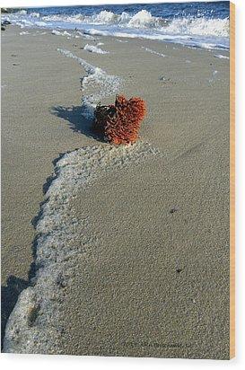 Foam And Seaweed On The Beach Wood Print by Allen Beilschmidt