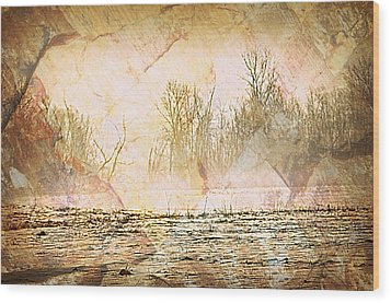 Fog Abstract 4 Wood Print by Marty Koch