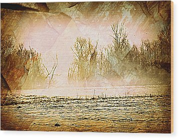Fog Abstract 5 Wood Print by Marty Koch