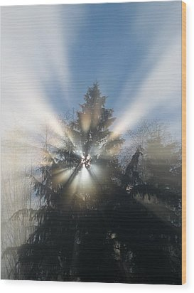 Fog And Light Rays Wood Print by Brian Chase