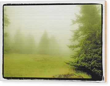 Wood Print featuring the photograph Fog Bank by Craig Perry-Ollila