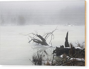 Fog On The Pond Wood Print by David Simons