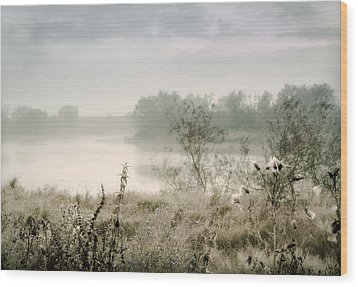 Fog Over The River. Stirling. Scotland Wood Print by Jenny Rainbow