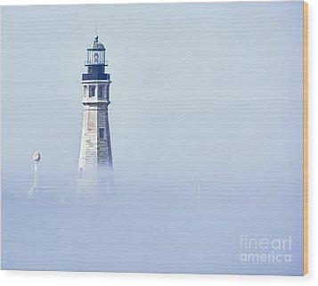 Fog Wood Print by Phil Pantano