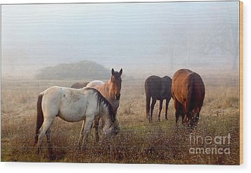 Fog Ponies Wood Print by Julia Hassett