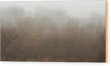 Fog Riverside Park Wood Print by Scott Norris