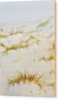 Fog Sand And Dune Grass - Outer Banks Wood Print by Dan Carmichael