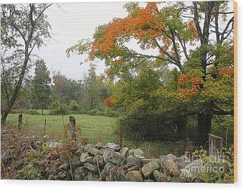 Foggy Autumn Wood Print