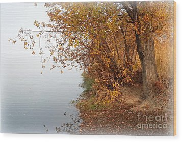 Foggy Autumn Riverbank Wood Print by Carol Groenen