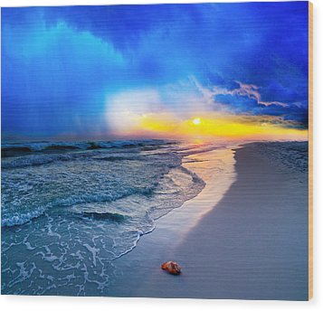 foggy blue sunrise - sea shell on Pensacola Beach Florida Wood Print by Eszra Tanner