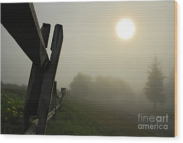 Foggy Country Road Wood Print by Lois Bryan