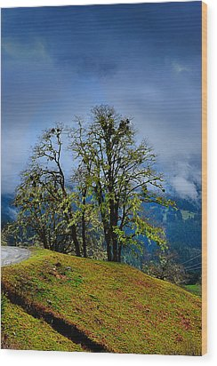 Foggy Day Wood Print by Donald Fink