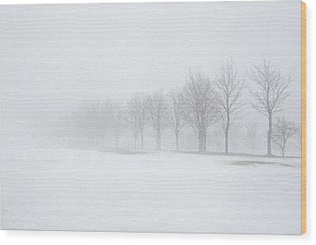 Foggy Day With Snow Wood Print by Donna Doherty
