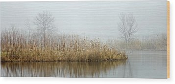 Foggy Duck Pond 1 Wood Print by James Blackwell JR