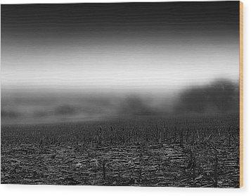 Foggy Field Wood Print by Tom Gort