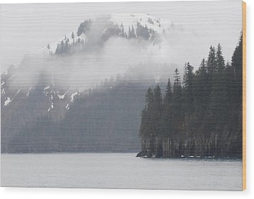 Foggy Journey Wood Print
