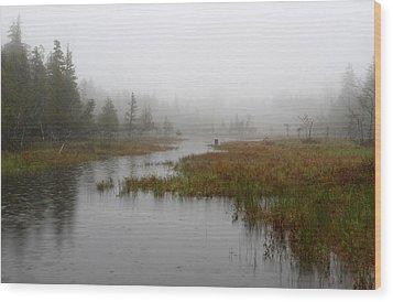 Foggy Marsh Near Jordan Pond Wood Print by Juergen Roth