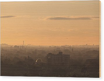Foggy Miami Skyline Wood Print by Jonathan Gewirtz