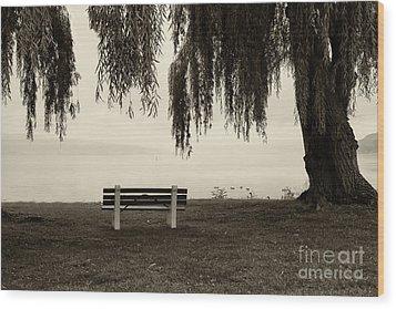 Foggy Morning At Stewart Park Wood Print