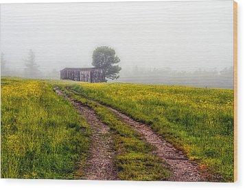 Foggy Morning Wood Print by Bob Orsillo