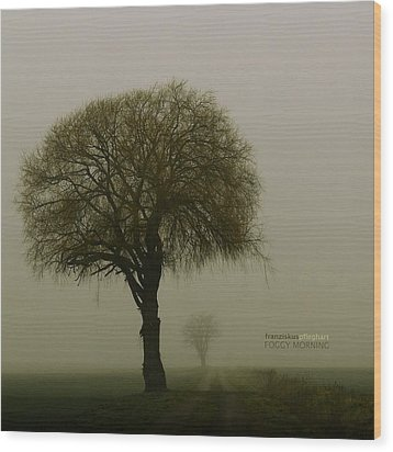 Wood Print featuring the photograph Foggy Morning by Franziskus Pfleghart